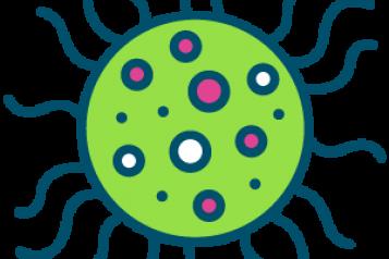 covid19 icon
